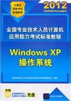 全国专业技术人员计算机应用能力考试标准教程——Windows XP操作系统(配光盘)